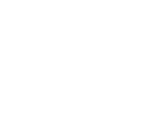 Progressive Metal Stamping