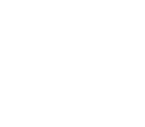 Metal Stamping Dies + Plastic Injection Molds