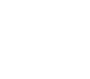 Managing the Extended Enterprise